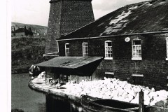 SHIRLY'S FLINT MILL IN 1950 - Flints/bone on the wharf